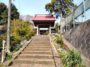 fujisawa__002.jpg