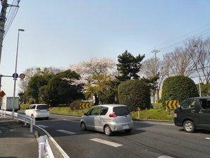 fujisawa__015.jpg