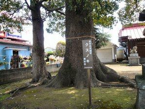 fujisawa__022.jpg