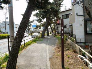 fujisawa__039.jpg