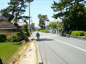 kakegawa_013a.jpg