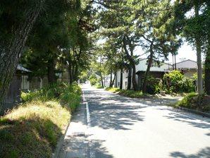 kakegawa_024.jpg