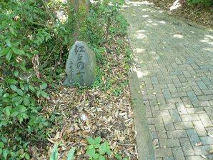 kakegawa_025.jpg