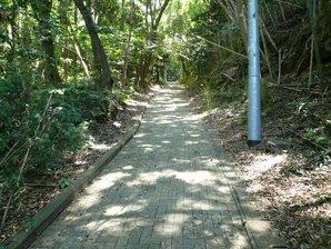 kakegawa_026.jpg