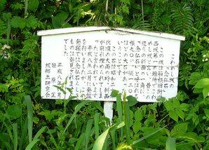 mishima_032.jpg