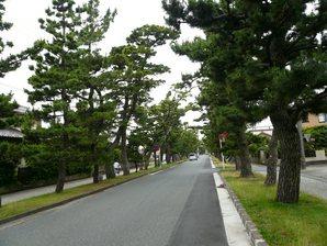 mitsuke_026.jpg