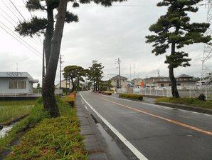 shimada_004.jpg