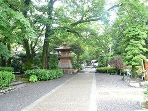 shimada_011.jpg
