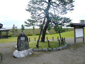 shimada_022.jpg