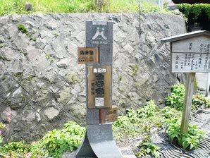 shimada_027.jpg