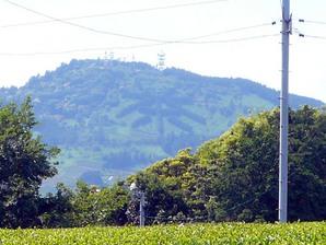 shimada_034.jpg