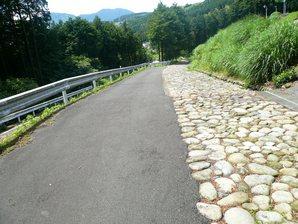shimada_035.jpg