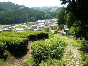 shimada_038.jpg