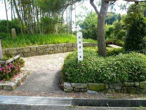shimada_054.jpg
