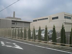suzuka_010.jpg