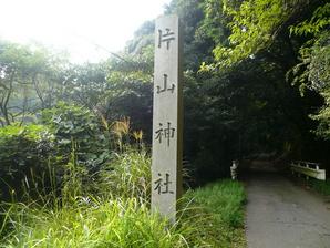 suzuka_040.jpg