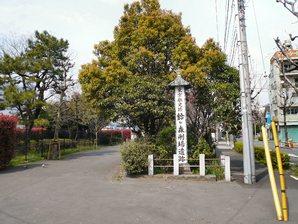 tokyo_031.jpg