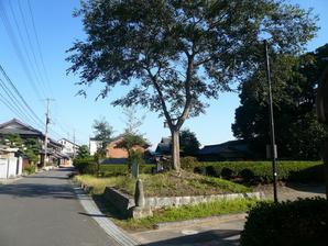 tsuchiyama_20.jpg